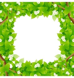 Leaves framing a message area vector