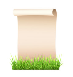 Old paper sheet in green grass vector