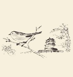 oriental sakura bird drawn sketch vector image