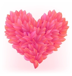 Beautiful heart made from pink petals vector