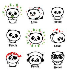 Cute panda asian bear vector