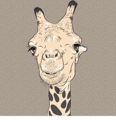 Sketch closeup portrait of funny giraffe vector