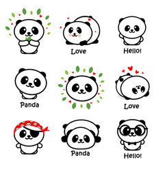 Cute panda asian bear vector