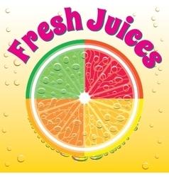 banner for juice grapefruit orange lime lemon vector image
