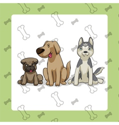 3dogs sitting vector
