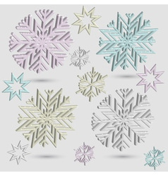 3d snowflakes vector image