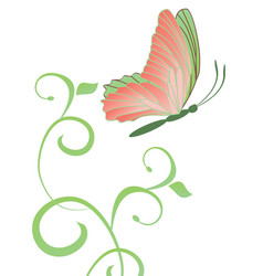 abstract butterfly and flourishes isolated on vector image vector image