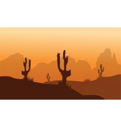 Sunset with cactus in desert vector
