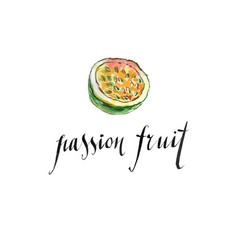 Watercolor passion fruit vector