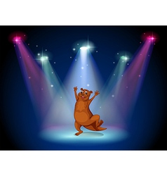 A stage with a sealion dancing at the center vector