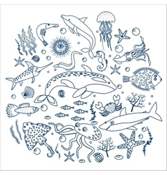 Concept set of sea animals fish outline line vector