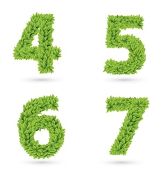 Numbers of green leaves collection vector image
