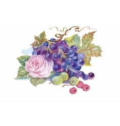 Hand drawn watercolor painting of grape and flower vector