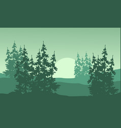 Spruce silhouette on the hill landscape vector