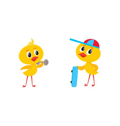 cartoon cute chicken characters set vector image