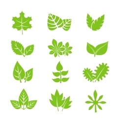 Green leaves icons set vector image vector image