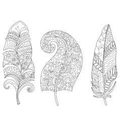 three feathers coloring for adults vector image