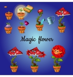 Cultivation stage magic flower vector