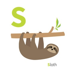Letter s sloth zoo alphabet english abc with cute vector