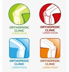 Knee joint bones orthopedic clinics and vector