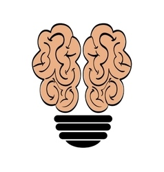 Brain and bulb icon human organ design vector