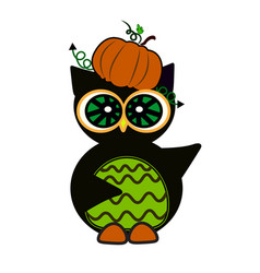 halloween owl pumpkin art face isolate on white vector image