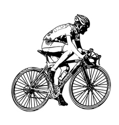 race bicyclist vector image