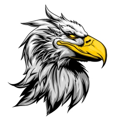 Angry eagle head vector image