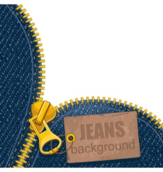 Metal zipper on denim background vector image
