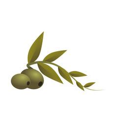 Olive fruit cartoon vector