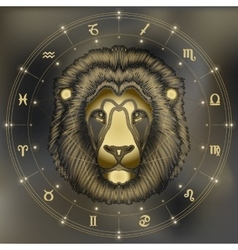 Golden lion portrait zodiac leo sign vector