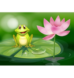 A frog beside the pink flower at the pond vector