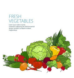 Healthy food fresh raw vegetables vector
