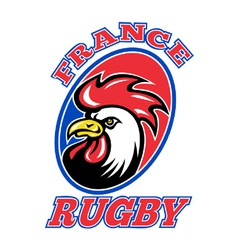 france rugby icon vector image vector image