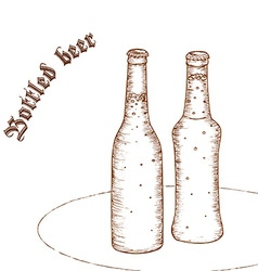 pencil hand drawn of pair of beer bottle with vector image