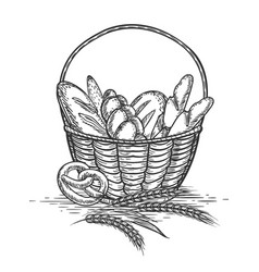 Sketch of wheat bakery basket vector