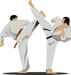 karate sportsmen vector image