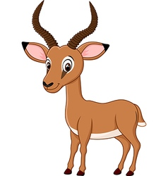 Cartoon funny impala isolated on white background vector