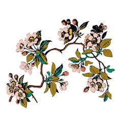Hand drawn sakura branch with blossom cherry vector