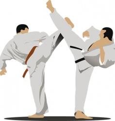 Karate sportsmen vector