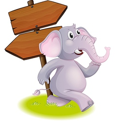 A gray elephant following the direction vector