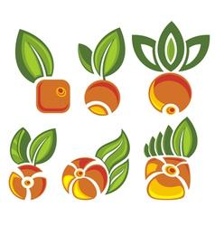 Berry symbols vector image vector image