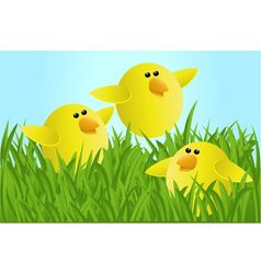 Easter chickens vector image
