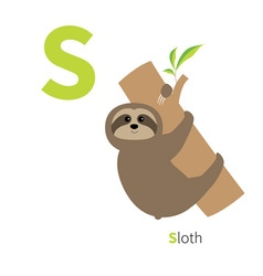 Letter s sloth on tree zoo alphabet english abc vector
