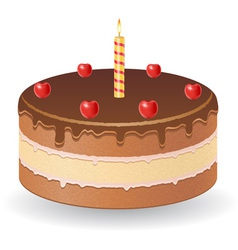 cake 01 vector image vector image