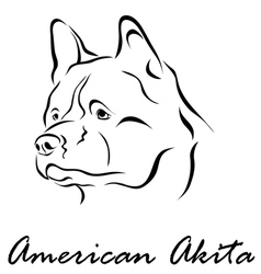 American akita vector