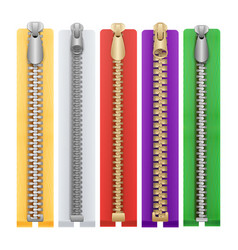 clothes zipper isolated metal zippers vector image