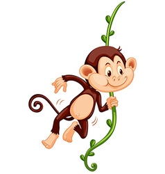 Cute monkey climbing up the vine vector image