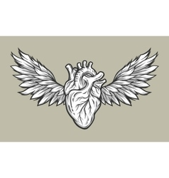 Heart with wings tattoo symbol vector