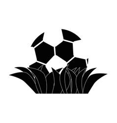 Soccer or football sport vector